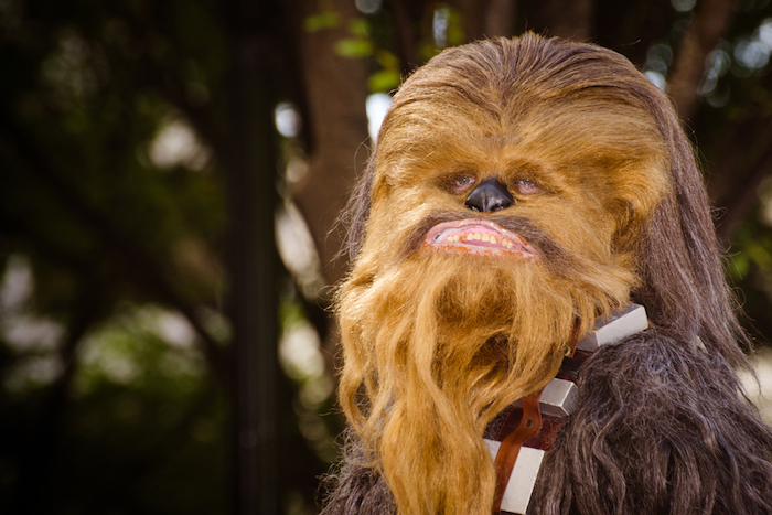 Kohl's Chewbacca Masks Sells
