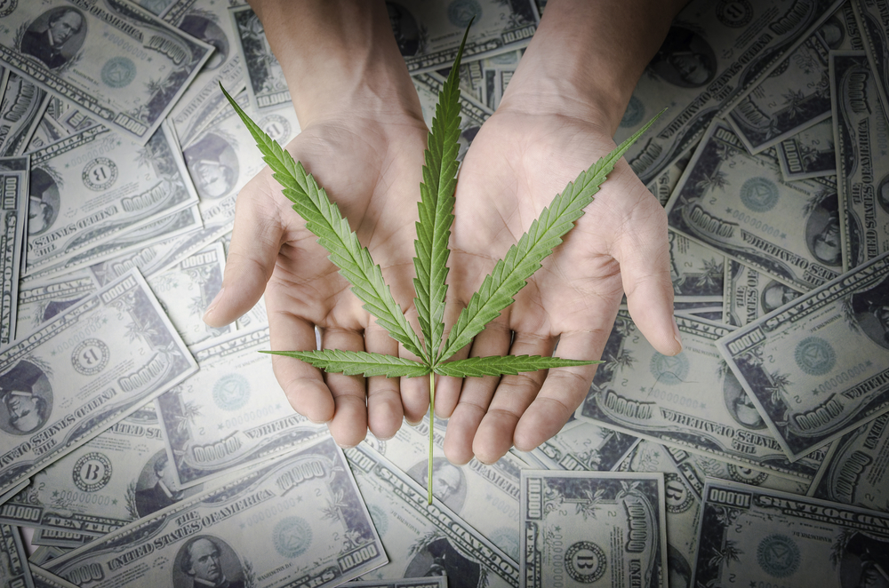 States want safe harbor for FIs serving legal cannabis industry