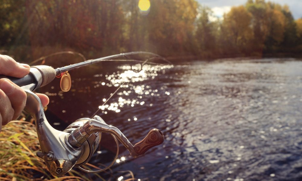 How postfly reels in amateur anglers for Fly fishing subscription box