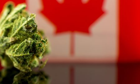 Canadian Marijuana Sales Top $40M in First Month