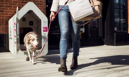 Making Stores Dog-Friendly With IoT Houses