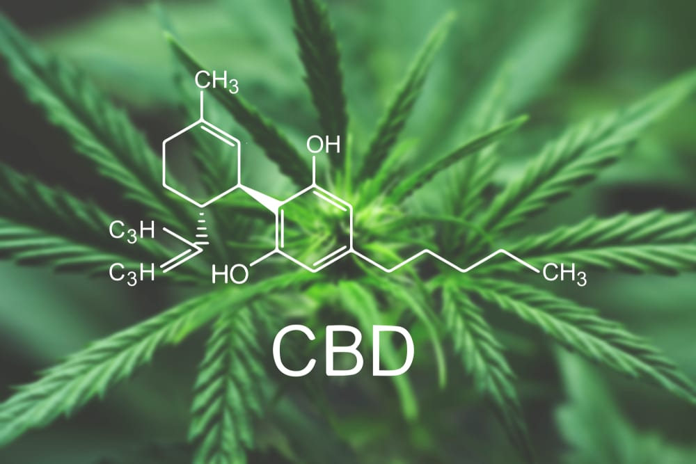 Creating A Mainstream US CBD Market