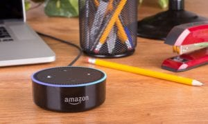 Amazon Raises Voice Storage Privacy Concerns