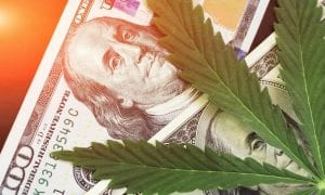 marijuana leaf with money