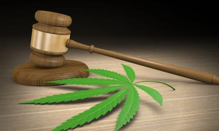 marijuana leaf, gavel