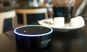 Voice Assistant Tech For Mobile Order-Ahead