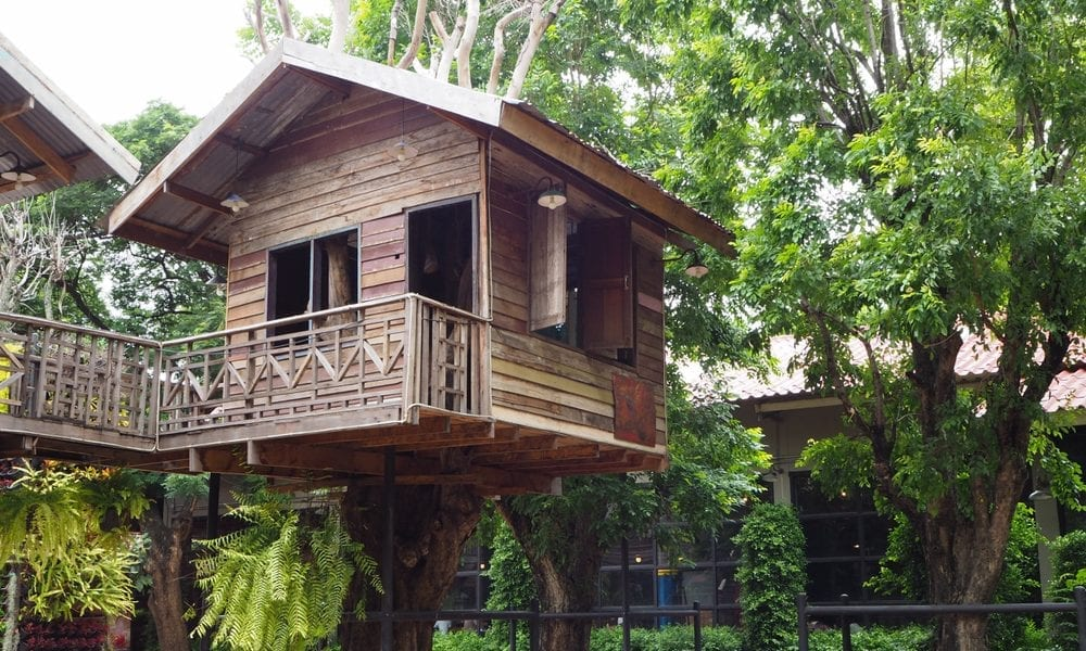 Why Treehouses Rule The Airbnb Roost