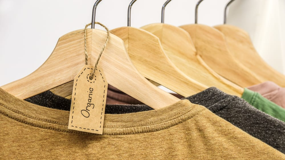 The Pivot That Made A Sustainable Brand A Staple