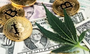 Eaze, silicon valley, marijuana, startup, delivery, vendors, B2B, payments, capital