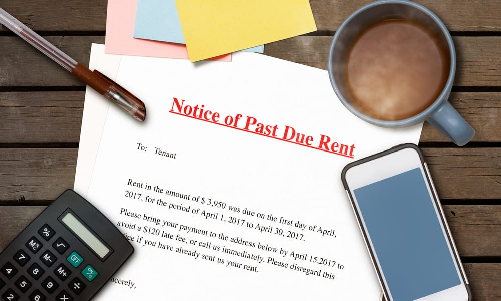 US Households Paying Rent Dropped 12 Percent