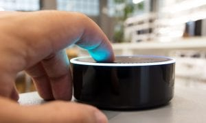 Alexa Could Spill Users' Personal Data, Report Finds