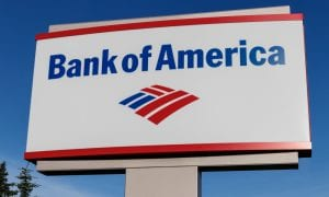 Bank of America Launches Business Treasury APIs
